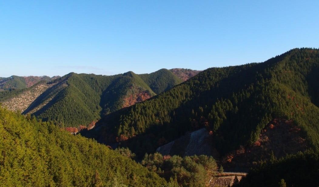 和歌山県・高野山(奥の院)平均天気予報(気象庁)「気温・降水確率」と季節の服装
