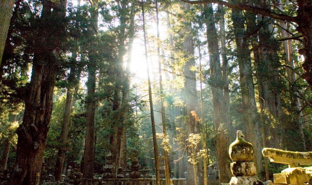 『参拝しておきたい』高野山・奥の院「有名人・戦国武将のお墓」【10基】