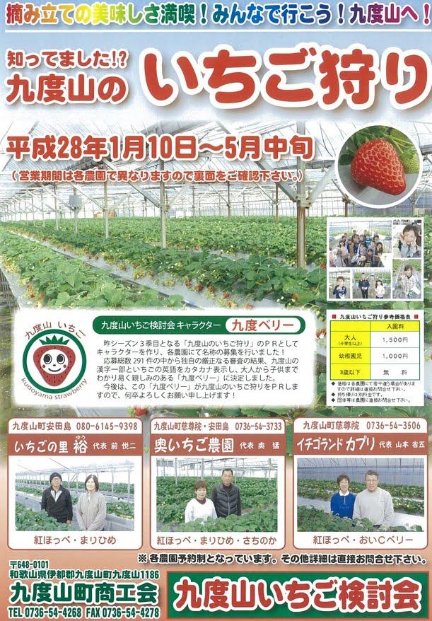 和歌山県 高野山・「九度山のイチゴ狩り」